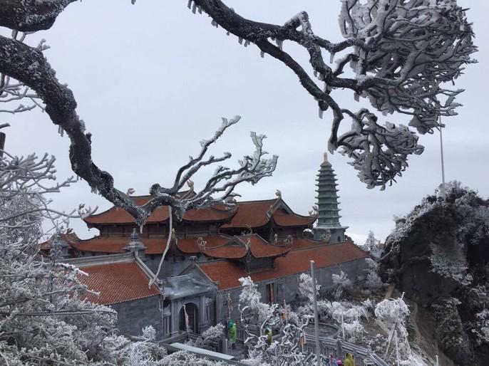 Hiếm hoi cảnh đỗ quyên rực lửa trong tuyết trên đỉnh Fansipan - Ảnh 4.