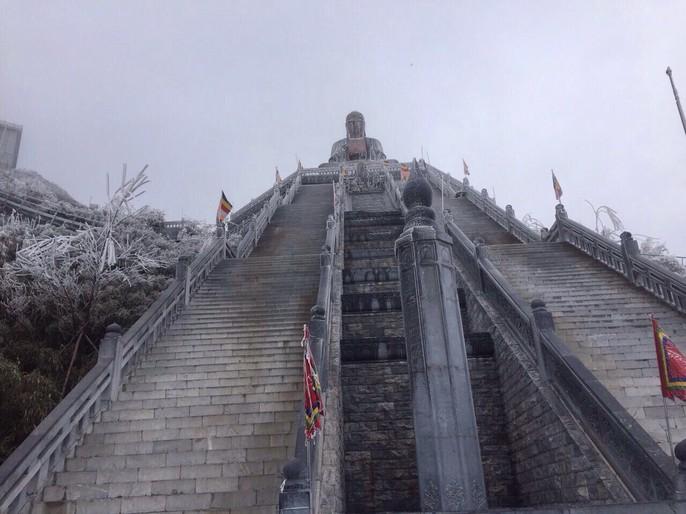 Hiếm hoi cảnh đỗ quyên rực lửa trong tuyết trên đỉnh Fansipan - Ảnh 11.