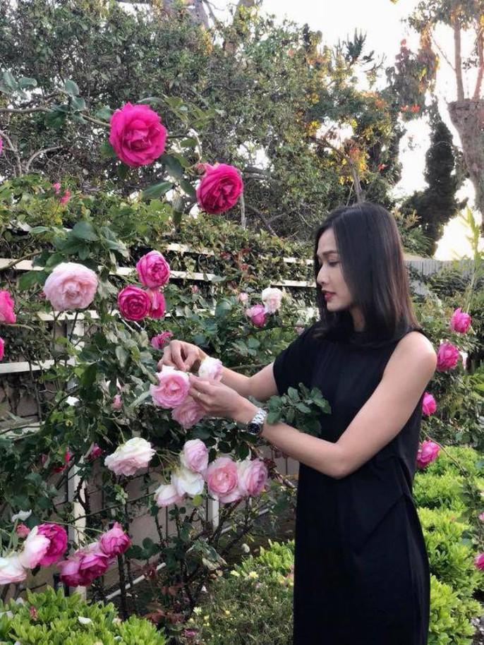 Hoa hậu Dương Mỹ Linh khoe vườn hoa hồng và cây ăn quả ở Mỹ - Ảnh 1.