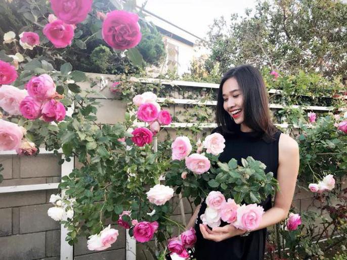 Hoa hậu Dương Mỹ Linh khoe vườn hoa hồng và cây ăn quả ở Mỹ - Ảnh 2.