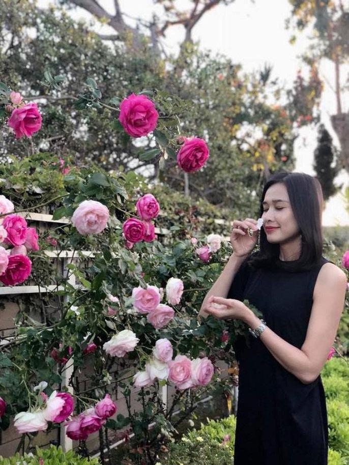 Hoa hậu Dương Mỹ Linh khoe vườn hoa hồng và cây ăn quả ở Mỹ - Ảnh 3.