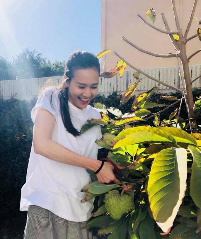 Hoa hậu Dương Mỹ Linh khoe vườn hoa hồng và cây ăn quả ở Mỹ - Ảnh 5.
