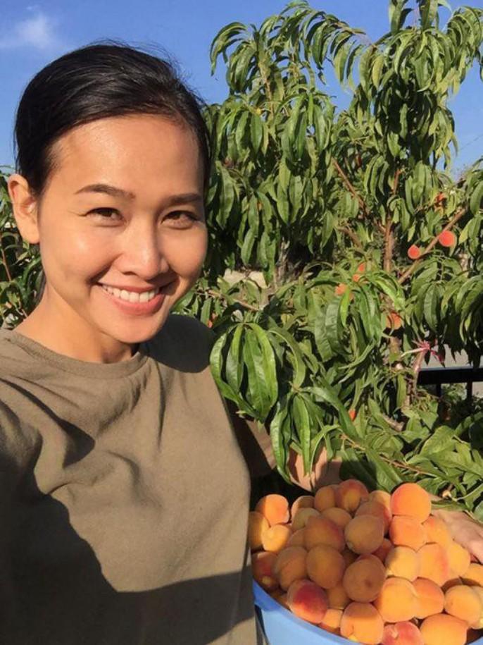 Hoa hậu Dương Mỹ Linh khoe vườn hoa hồng và cây ăn quả ở Mỹ - Ảnh 7.