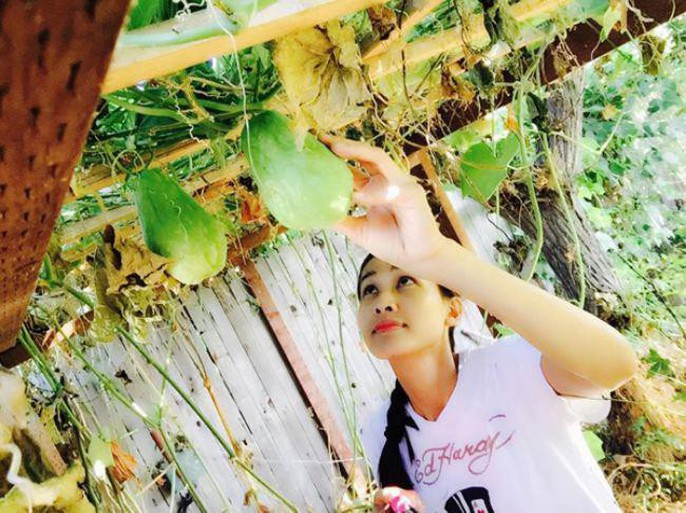 Hoa hậu Dương Mỹ Linh khoe vườn hoa hồng và cây ăn quả ở Mỹ - Ảnh 8.