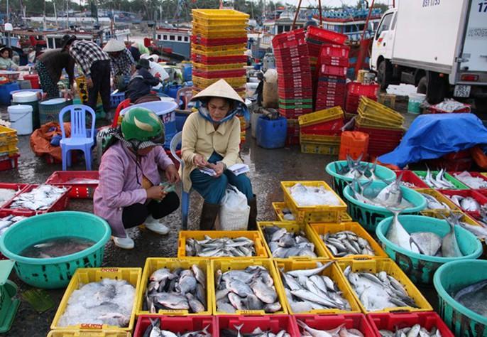 Ngư dân Ninh Thuận với những chuyến biển đầy ắp cá