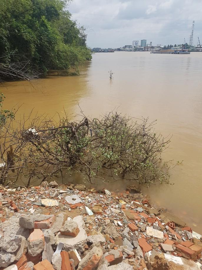 Lại thêm một vụ lấp, lấn sông Đồng Nai - Ảnh 3.