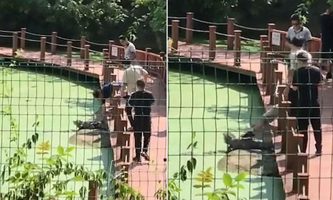 Khách Trung Quốc say xỉn, vào khu bảo tồn… giẫm cá sấu - Ảnh 1.