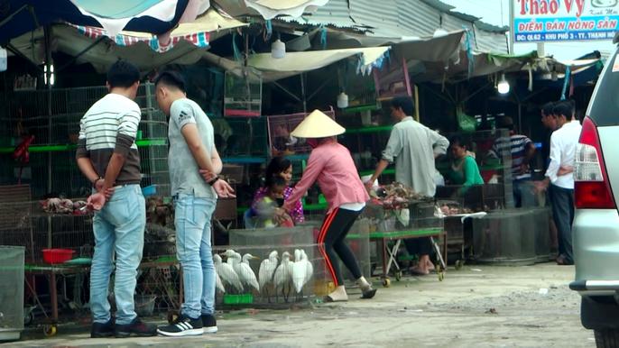 Cận cảnh tàn sát chim trời ở chợ chim lớn nhất Miền Tây - Ảnh 4.