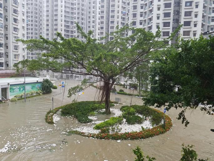 [Clip] - Bão Mangkhut xô nghiêng nhà cửa, người già ở Hồng Kông quyết không sơ tán - Ảnh 4.