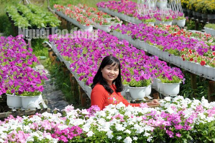 Lão nông 70 tuổi tiết lộ lí do trồng toàn hoa kiểng màu tím, thu hơn 15 tỉ/năm - Ảnh 6.