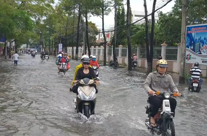 Bạc Liêu, Cà Mau ngập kỷ lục do ảnh hưởng bão số 1 - Ảnh 11.