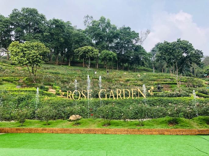 Sững sờ trước vườn hồng 3,5 ha tuyệt đẹp vừa nhận kỷ lục Việt Nam - Ảnh 16.