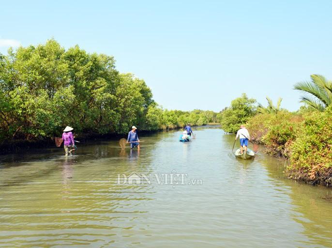 Ngợp với cảnh mỏi tay vớt cá dạt vào bờ ở Cà Mau, Bạc Liêu - Ảnh 4.