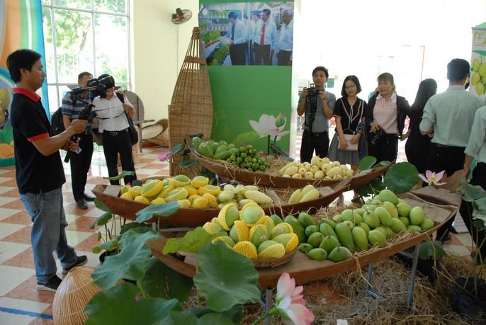 Sau 10 năm đàm phán, lô xoài đầu tiên của Việt Nam chính thức vào thị trường Mỹ - Ảnh 4.