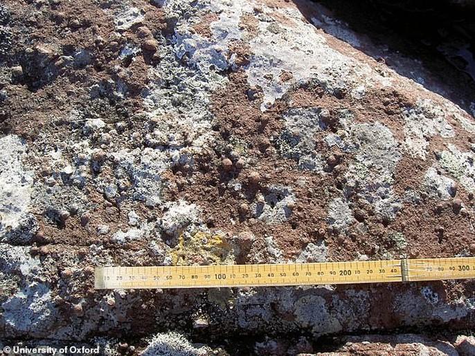 Tàn tích thiên thạch 3 tỉ tấn rơi xuống trái đất - Ảnh 5.