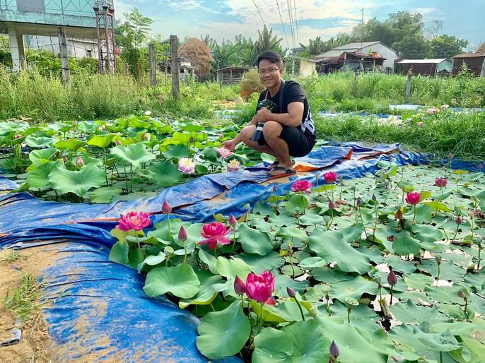 Độc và lạ về giống sen nở hàng trăm cánh tuyệt đẹp ở Quảng Nam - Ảnh 3.