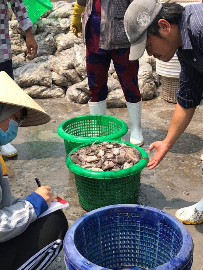 Bạch tuộc ắp ụ ở Vàm Láng, Gò Công Đông - Ảnh 3.