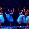 """""""Đã mắt"""" với các thiên nga múa lộng lẫy"""