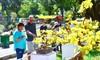 Du khách nước ngoài ca ngợi Hội Hoa Xuân Tao Đàn