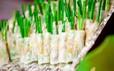 Saigontourist mang món ngon Nam bộ đến Liên hoan Ẩm thực toàn quốc - Khánh Hòa 2019