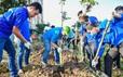 Chung tay cải thiện môi trường sống