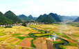 Bắc Sơn - bức tranh quyến rũ xứ Lạng
