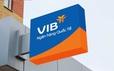 Cổ phiếu tăng giá mạnh, VIB lên kế hoạch chia thưởng 40%