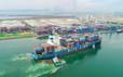 Dịch vụ logistics trọn gói của THILOGI - Giải pháp giúp doanh nghiệp tăng tính cạnh tranh