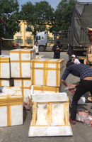Phát hiện xe khách chở gần 800 kg thịt heo không rõ nguồn gốc