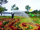 Đà Lạt: Rực rỡ sắc hoa ngày khai hội