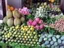 Hoa quả giải nhiệt Hà Nội vừa bán vừa la vẫn đắt hàng