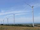 Điện gió: Tiềm năng bỏ ngỏ