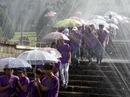 Đà Lạt phải làm mưa nhân tạo