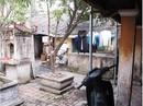 Tan nát di tích: Ngang nhiên lấn chiếm đình, chùa