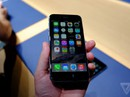 Đặt hàng iPhone 6 quá tải trong ngày đầu tiên