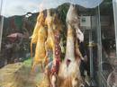 """Vừa khai hội chùa Hương đã thấy """"chặt chém"""", thịt thú rừng"""