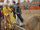 Tái hiện hình ảnh vua Lê Đại Hành cày ruộng đầu xuân
