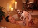 Mariah Carey mạnh tay chi tiền vì... chó cưng!