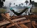 Phát hiện ca nghi nhiễm Ebola tại Đà Nẵng