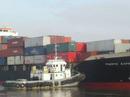 Đâm va với tàu vạn tấn, tàu cá có 7 thuyền viên chìm nghỉm