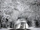 Trong 2 ngày tới, Sa Pa có thể có băng giá, mưa tuyết
