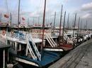 Quảng Ninh ban bố lệnh cấm biển, sơ tán dân đối phó bão Kalmaegi