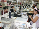 Thanh tra tất cả các doanh nghiệp nợ BHXH từ 3 tháng trở lên