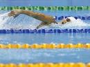 Ánh Viên giành HCĐ Cúp bơi lội thế giới Moscow 2015