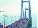 Úc khởi động cuộc thi nhiếp ảnh về cầu Mỹ Thuận