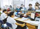 Người đứng đầu cơ quan tuyển dụng phải xác minh văn bằng của người trúng tuyển