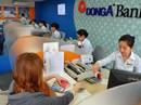 Ngân hàng Đông Á cam kết vẫn hoạt động bình thường