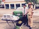Bị CSGT kiểm tra, bỏ lại 3.275 kíp nổ trên xe taxi Mai Linh