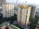 Sức sống chung cư bình dân