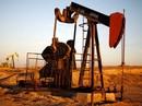 Giá dầu rớt xuống mức thấp nhất 12 năm qua